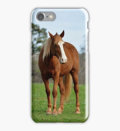 A horse is a horse, of course iPhone Case/Skin