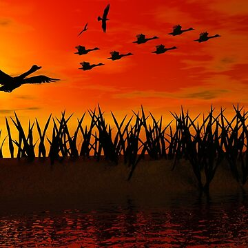 The sunset with flying ducks by willie50