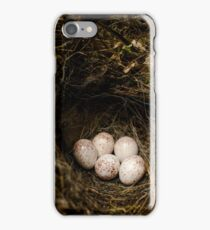 Bird Eggs iPhone Case/Skin