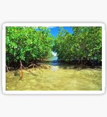 Tropical Waters Sticker