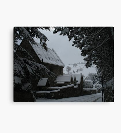 Framing the View Canvas Print