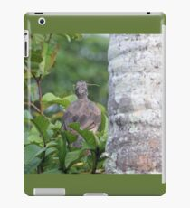 Bird Eating an Insect iPad Case/Skin
