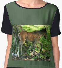 Foal Women's Chiffon Top
