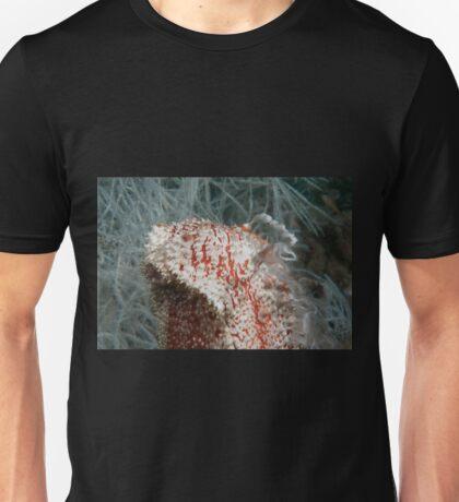Spawning Sea Cucumber, Kapalai, Malaysia T-Shirt