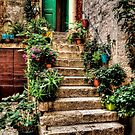 Courtyard Steps by Colin Metcalf