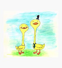 Mr. and Mrs. Duck Photographic Print