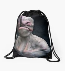 The Scavanger Drawstring Bag
