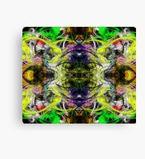 Symmetry Of Colour Abstract Canvas Print