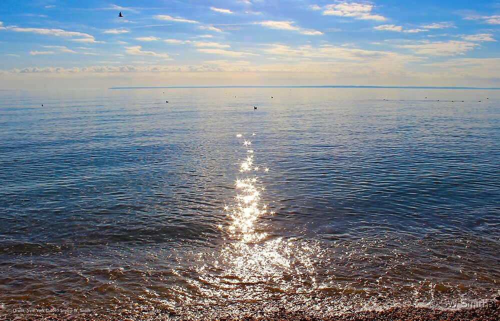 Sunny Morning | Orient Point, New York by © Sophie W. Smith
