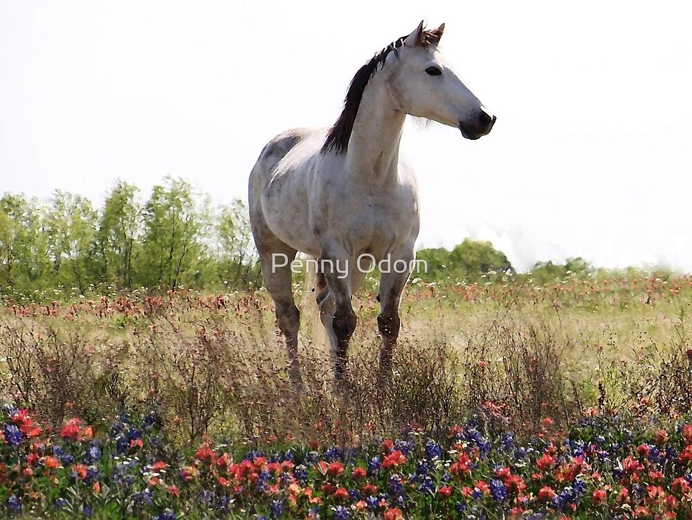 Field of Flowers In Texas by Penny Odom