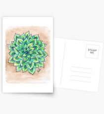The Single Succulent Postcards
