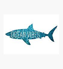 Ocean Vibes | Shark Photographic Print