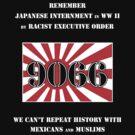 Japanese Internment in WW II by Samuel Sheats