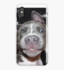 Silly, Baby, Blue Pit Bull Puppy Dog  iPhone Case