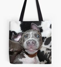 Silly, Baby, Blue Pit Bull Puppy Dog  Tote Bag