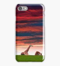 giraffes resting in the sunset iPhone Case/Skin