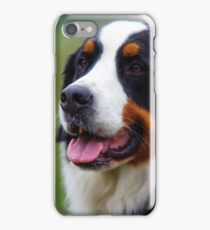 Bernese Mountain Dog Portrait iPhone Case/Skin