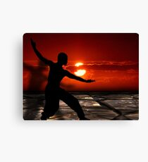 Martial arts  Canvas Print