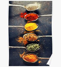 Colorful spices in metal spoons  Poster