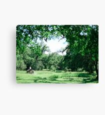 Green Grass Farmer Canvas Print