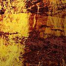 Fiery Metal by Printpix