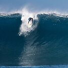 The Art Of Surfing In Hawaii 30 by Alex Preiss