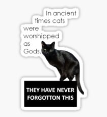 In Ancient Times Cats Were Worshipped As Gods Sticker