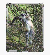 Just hanging around! iPad Case/Skin