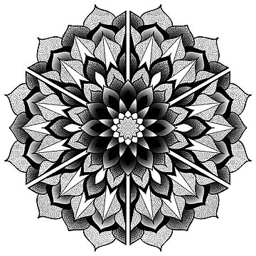 Floral Mandala  by mdcindustries