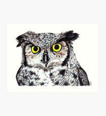 Owl with Yellow Eyes Art Print