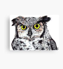 Owl with Yellow Eyes Canvas Print
