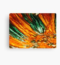 Abstract Orange and Green Canvas Print