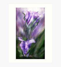 Purple Calla Lilies In Calla Vase Art Print