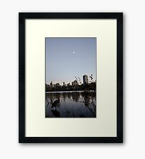 the Nature of Vancouver Framed Print