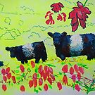 Heather and Belted Galloway Cows Dartmoor by MikeJory