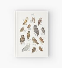 Owls Hardcover Journal