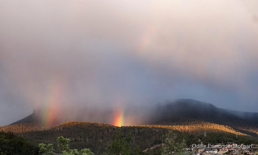 kunanyi/Mt Wellington sunrise by Odille Esmonde-Morgan