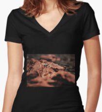 Miniature World #1 Women's Fitted V-Neck T-Shirt