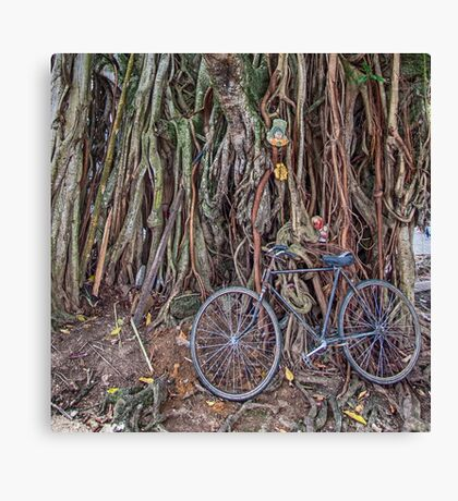 Bicycle and Tree Canvas Print