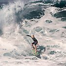 The Art Of Surfing In Hawaii 34 by Alex Preiss