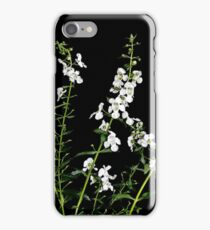 Angelonia angustifolia iPhone Case/Skin
