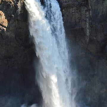 The Falls by DaniMorin519