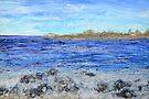 Islands and Surf by Regina Valluzzi