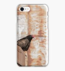 Turkey Vulture 2016-1 iPhone Case/Skin