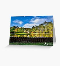 Beautiful Pond at Brookgreen Gardens Greeting Card