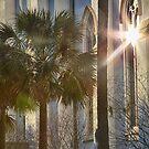 Church Window by ishotit4u