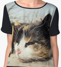 Sad kitten Women's Chiffon Top