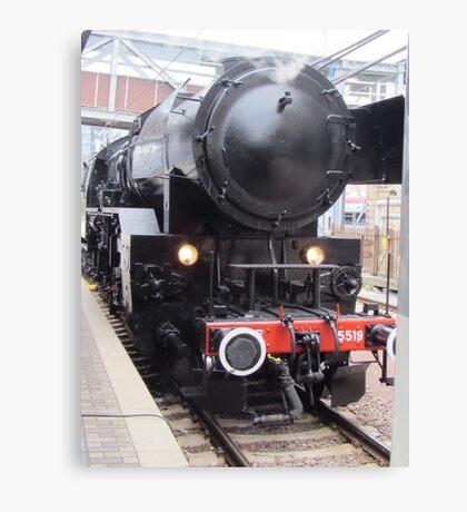 Museum train Canvas Print