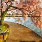 The Cherry Blossom Festival by Lois  Bryan