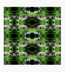 Flowers Fractal Pattern Photographic Print